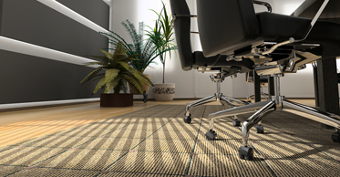 Edmonton Carpet Cleaning
