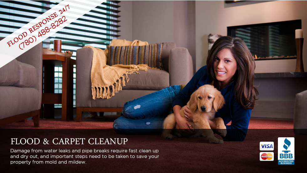 Edmonton Carpet Cleaner
